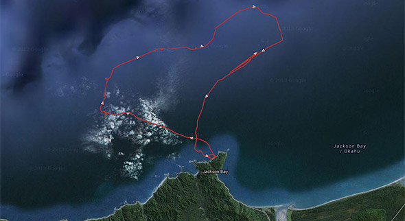 The first ever recorded tawaki foraging track