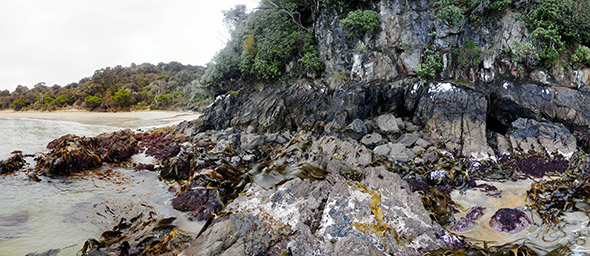 The rocky shore north of Golden Beach