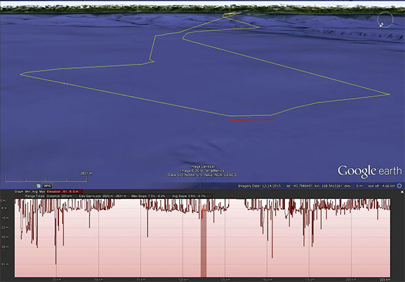The same foraging trip in 3D, although dives are difficult to see